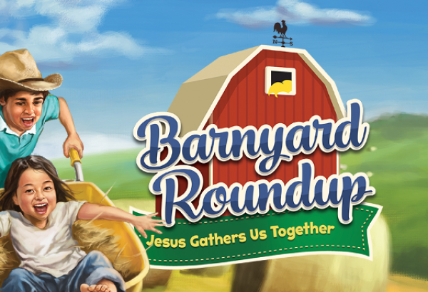 VBS 2016 background 600x410